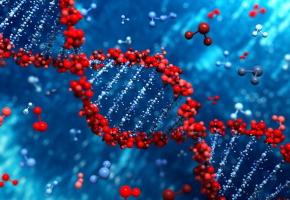 Ченнелинг. Крайон – Раскрытая ДНК