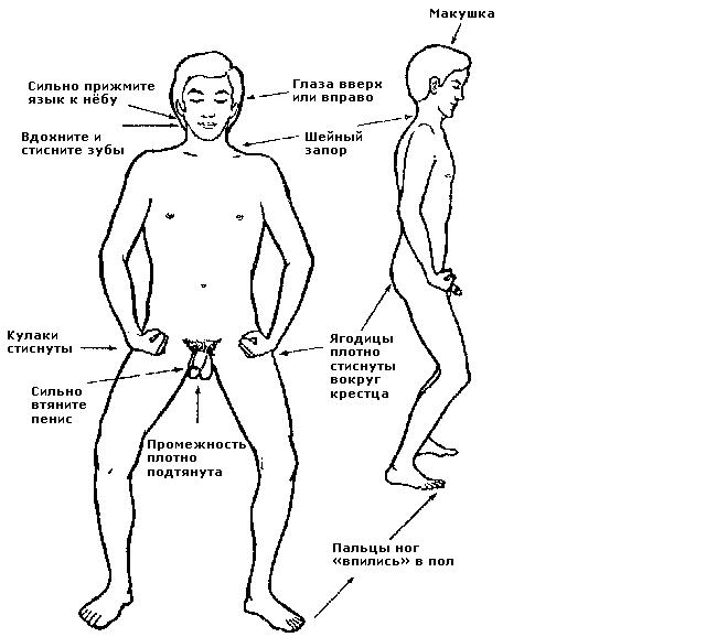 Напрягать мышцы во время секса