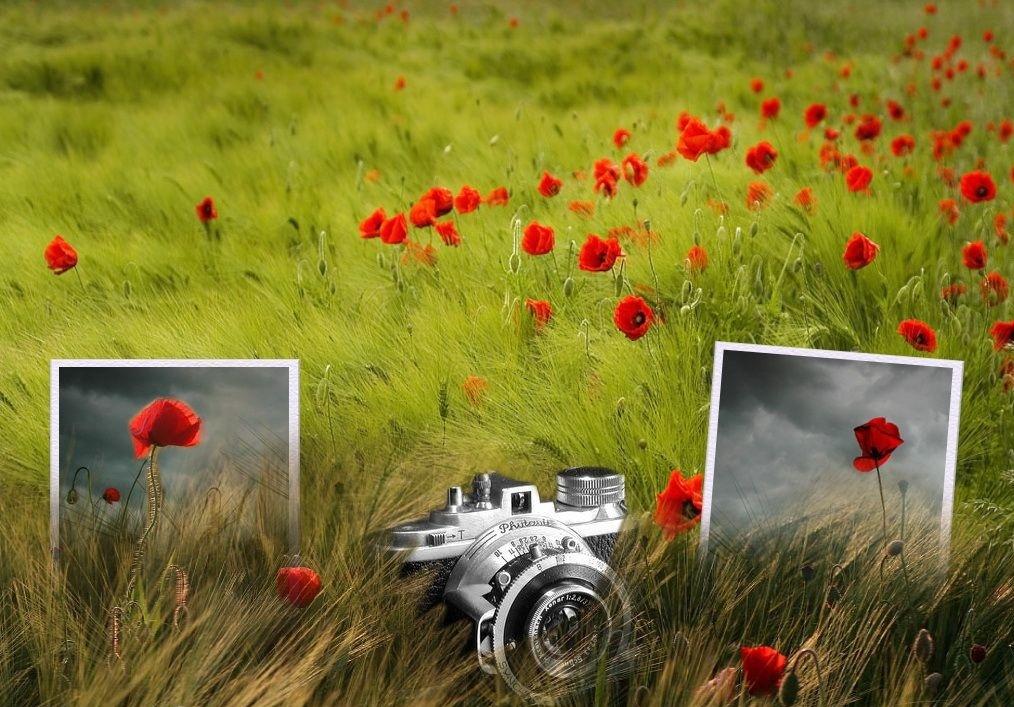 Открытки с днем рождения для мужчины фотографа, бумага используется для