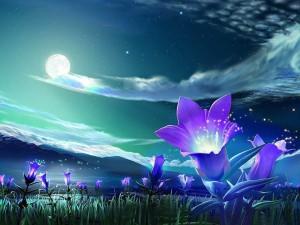 MoonlightLily_1024x1024