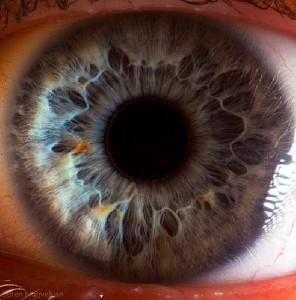 глаз-тибетские-пульсации