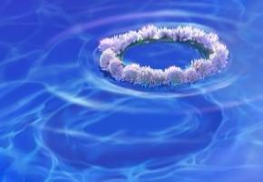 Женская стихия – вода. Источник или болото?