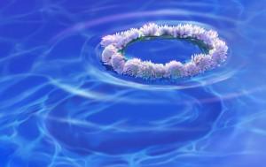 http://meditation-portal.com/wp-content/uploads/2013/11/0b013cf26c0d6359cb7ae06bdbdcb758-300x189.jpg
