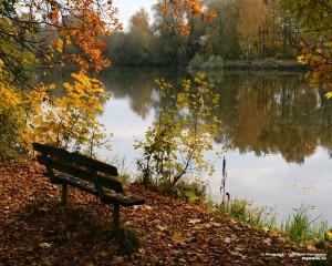 http://meditation-portal.com/wp-content/uploads/2013/11/757811_131957-300x240.jpg