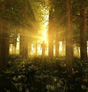 http://meditation-portal.com/wp-content/uploads/2013/11/FpTcyuKx7xE-285x300.jpg