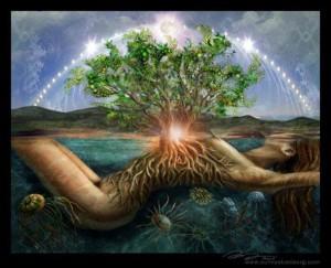http://meditation-portal.com/wp-content/uploads/2013/11/XSFomP6XHHM-300x243.jpg