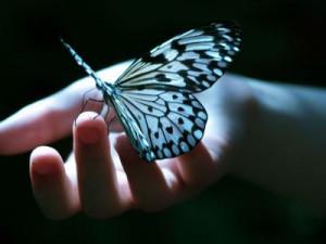 http://meditation-portal.com/wp-content/uploads/2013/11/d0LRNDhC76Y-300x225.jpg