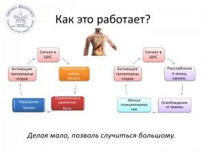 Орто-Биономия для новорожденных-small_007