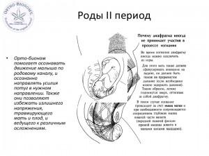 Орто-Биономия для новорожденных-small_011