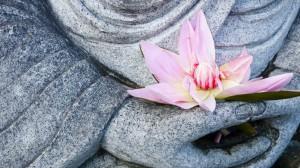 meditation2-799x450