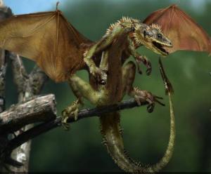 ж.8 стр 25 Воплощение связанное с драконами