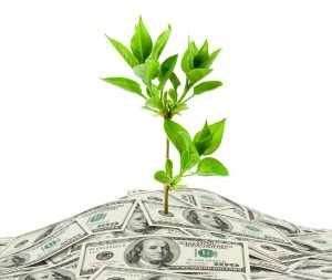 bigstock-Money-And-Plant-5585730