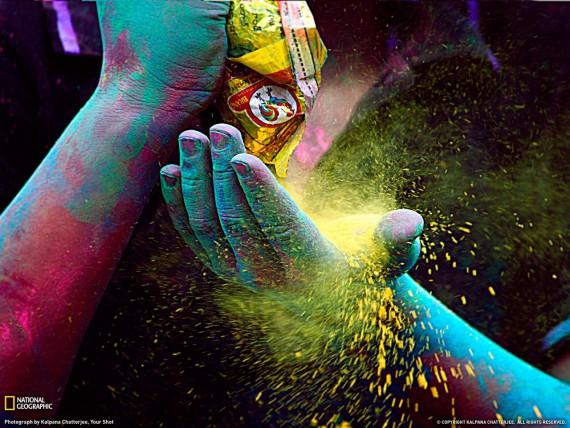 краски жизни