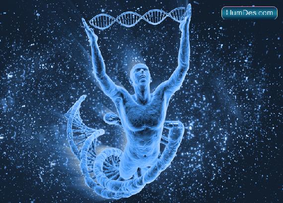 Концепция Дизайна Человека. Часть 1. Генетика и работа Сознания