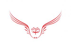 Лого 1 ступени курса