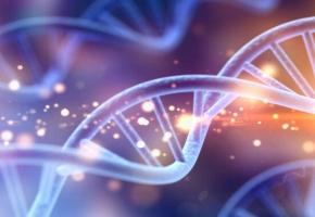 Научно доказано, молекула ДНК может исцелиться при помощи ЧУВСТВ человека